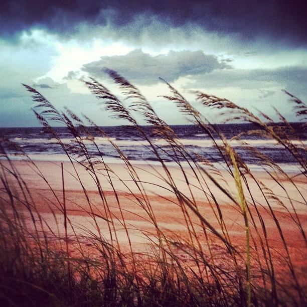 Same Rainstorm, Beachside