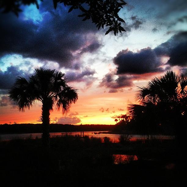 100% Pure Natural Florida