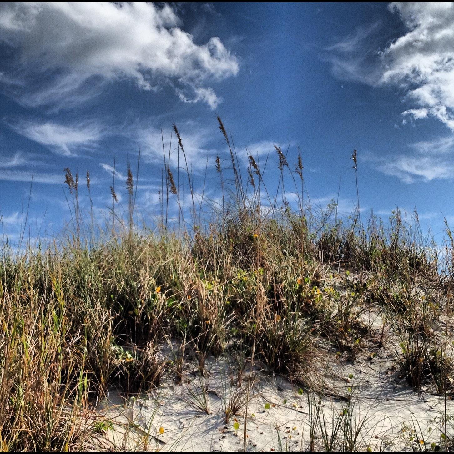 New Smyrna Beach: God Spot