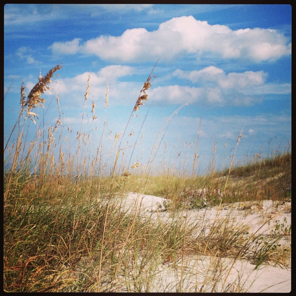 Ponte Vedra Beach sea oats and sand dunes by Tim Hamby