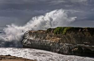 Steamer Lane Santa Cruz surfer