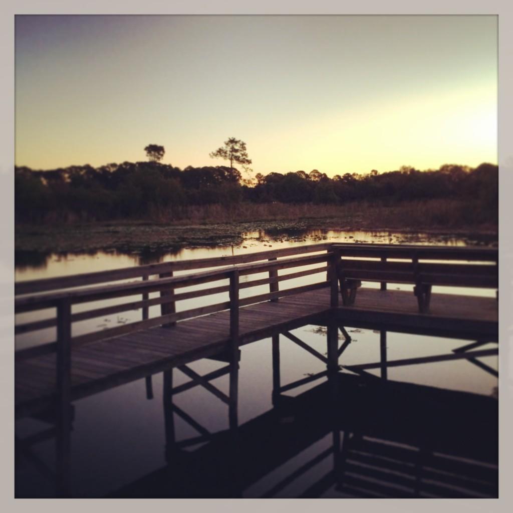 Lake Ola, Tavares, Florida