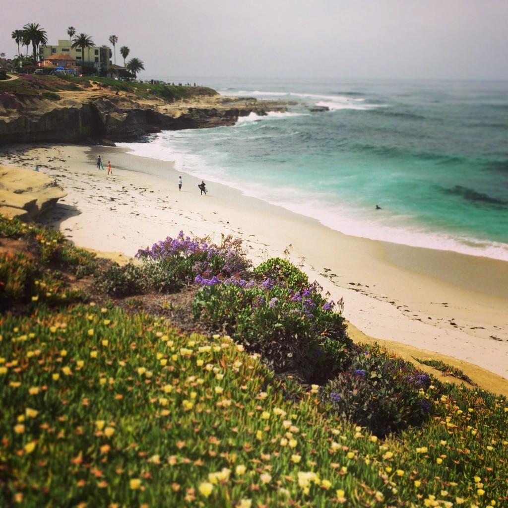 Scenic beauty in La Jolla, California
