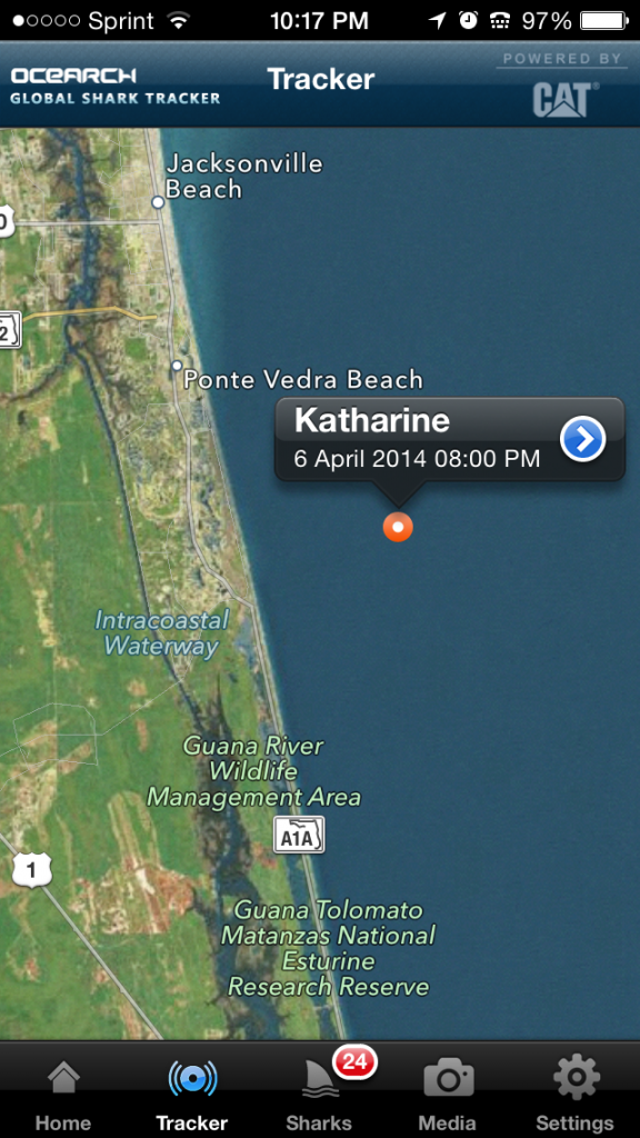 "Katharine, a 14' 2"" 2,300 lb. Great White shark pinged in  near Mickler's Beach on April 6th, 2014"