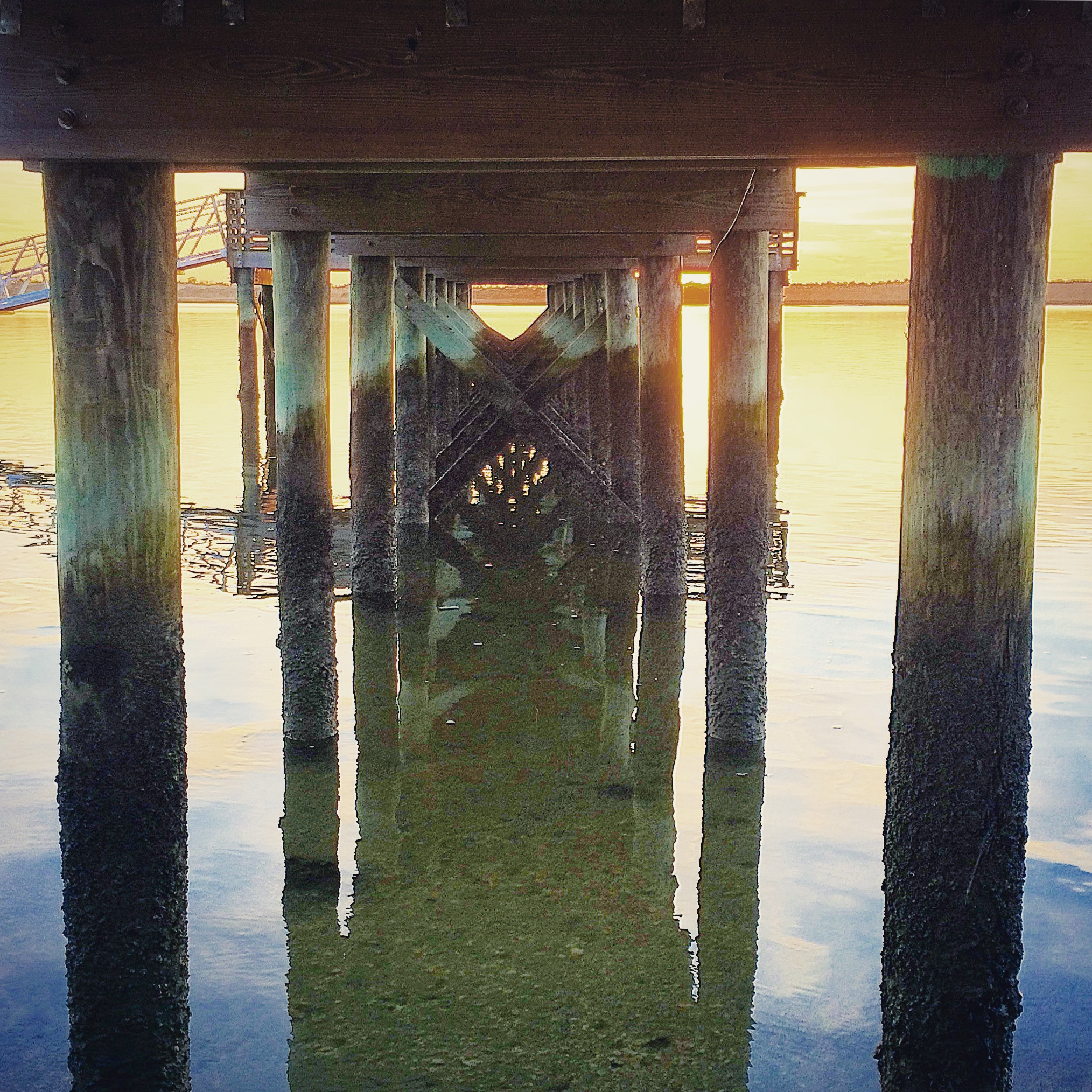 Underneath a pier
