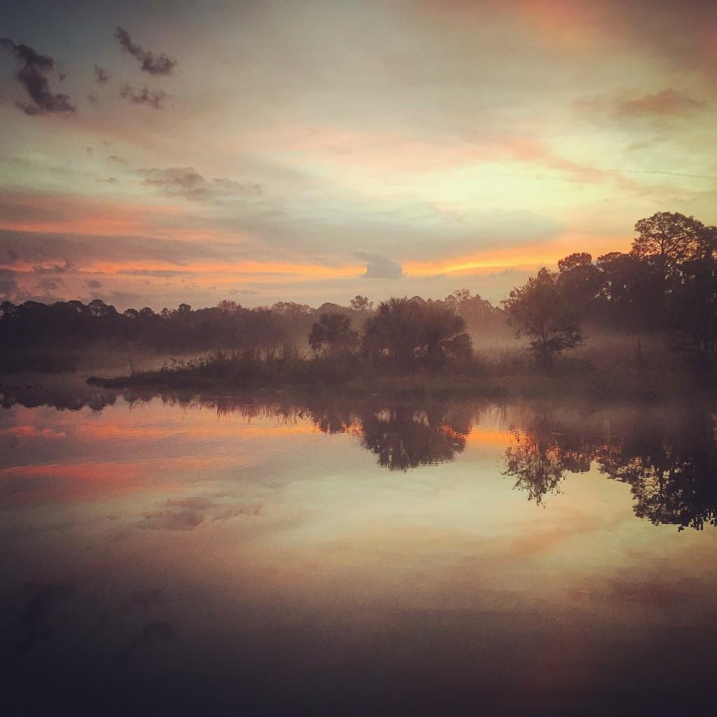 Orlando, FL natural beauty