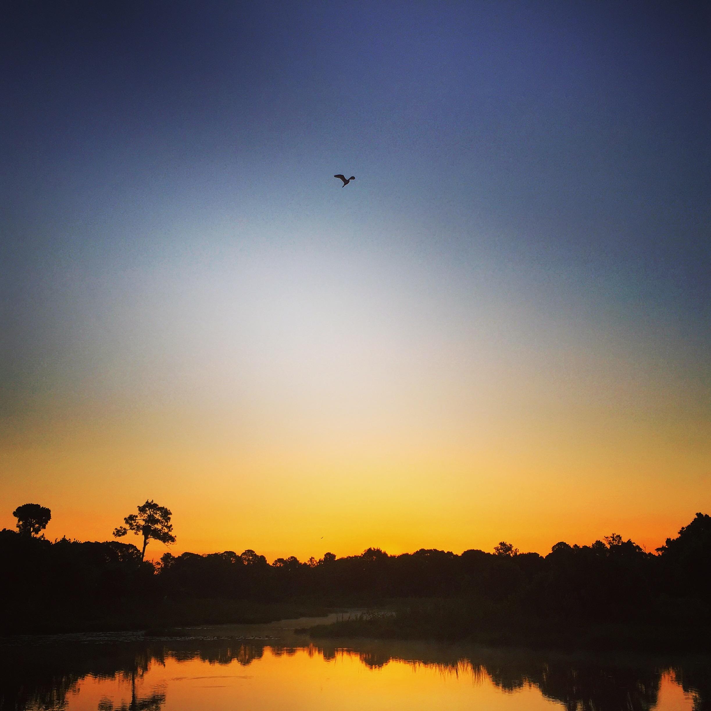 Orlando Lakefront Sunrise