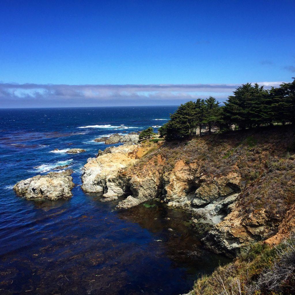 Tree Point, Big Sur, CA