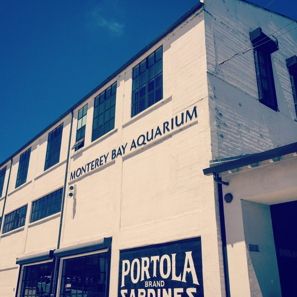 Monterey Bay Aquarium on Cannery Row in Monetrey, CA