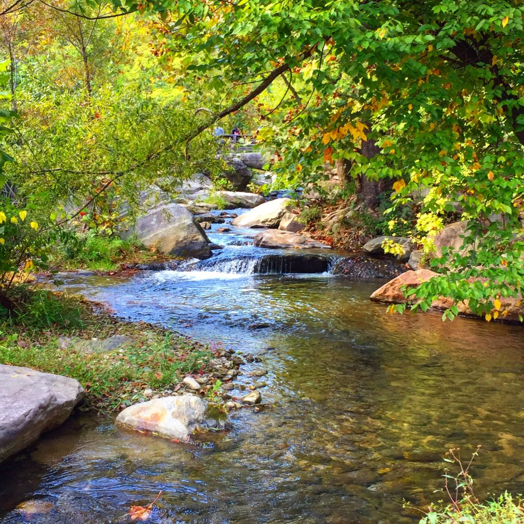 Smoky-Mountain-Stream