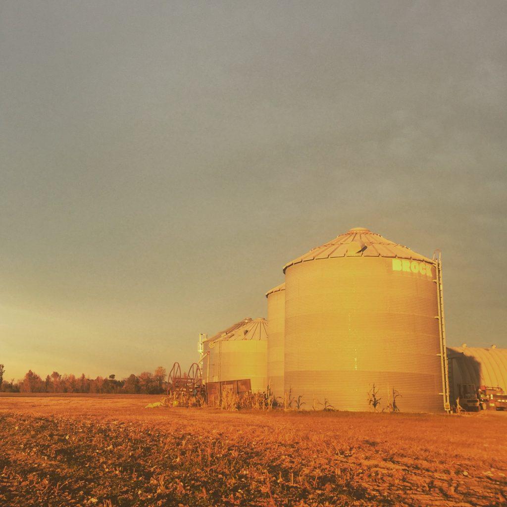corn silos on a farm in Hartsville, South Carolina