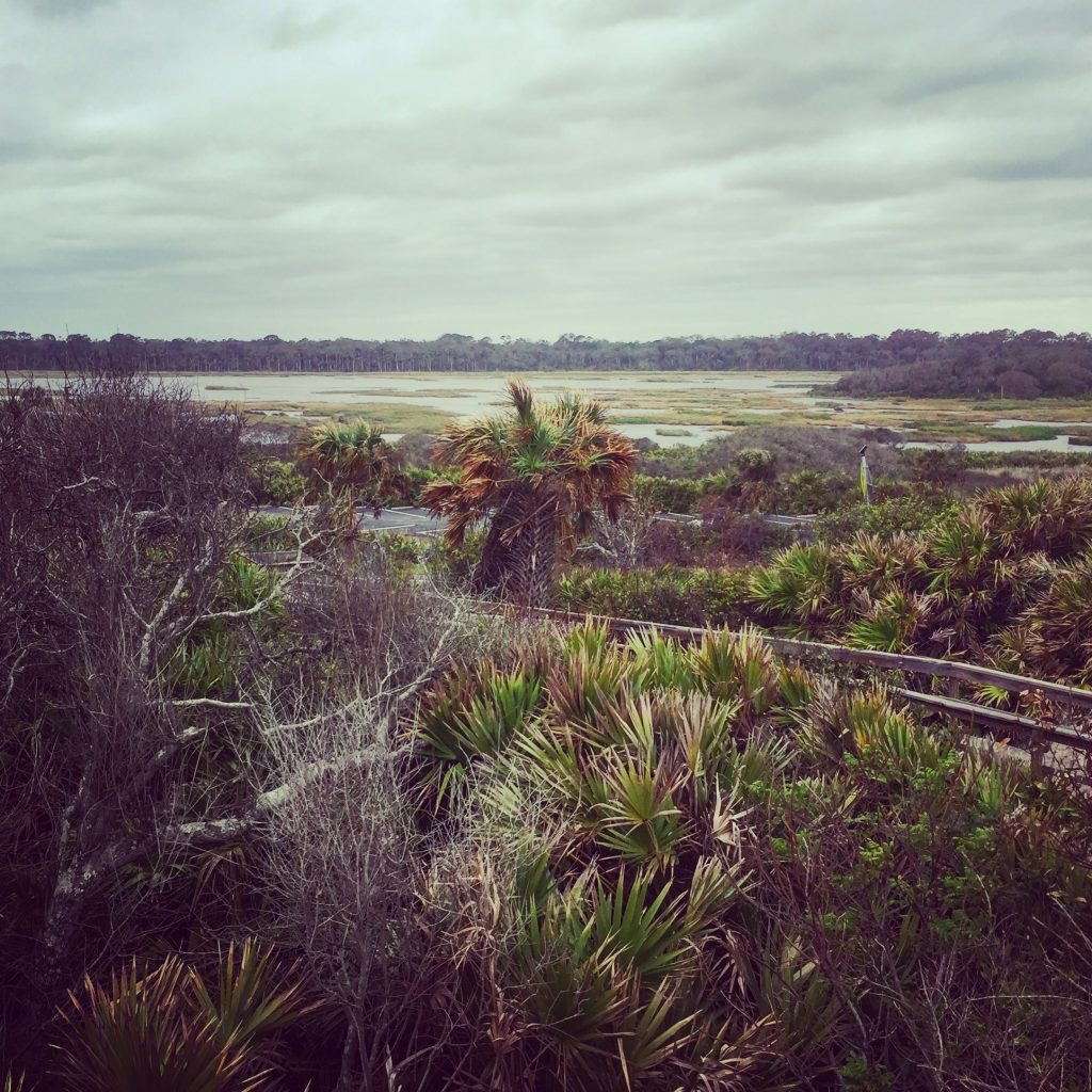 Guana River State Park, Ponte Vedra Beach, FL