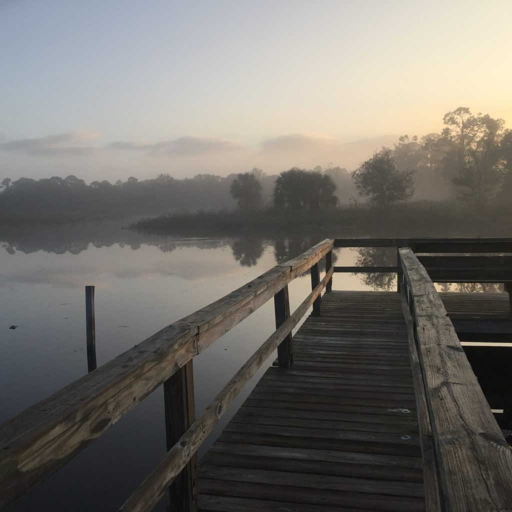 A old dock on a lake in the early morning in Tavares, FL
