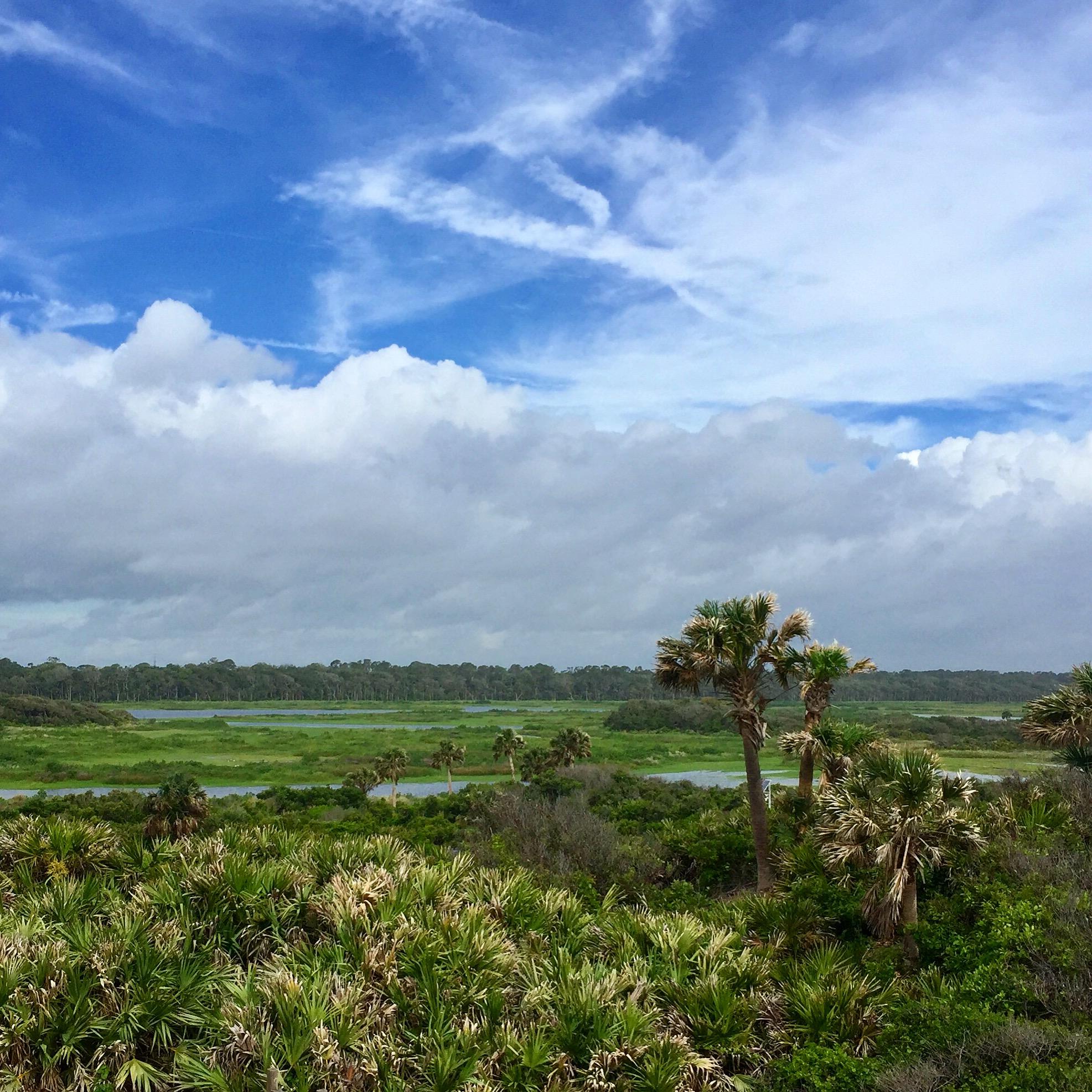 Guana River Reserve