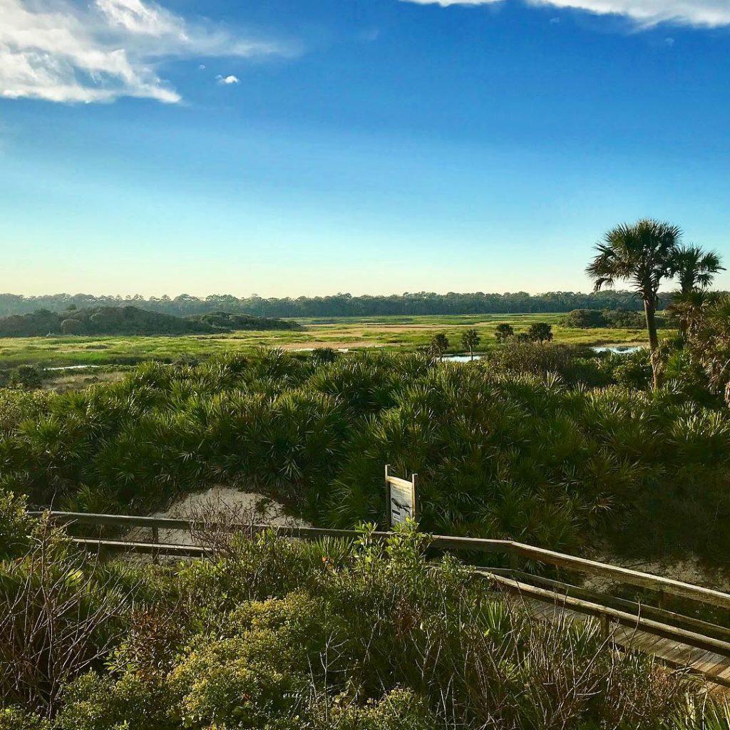 Guana-State-Park-Marshside