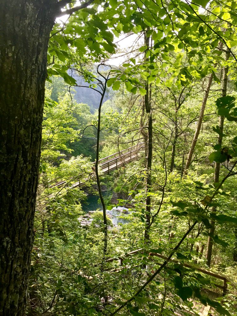Suspension Bridge inside Tallulah Gorge