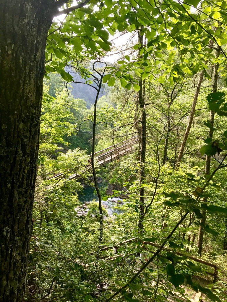 Suspension Bridge inside Tallulah Gorge